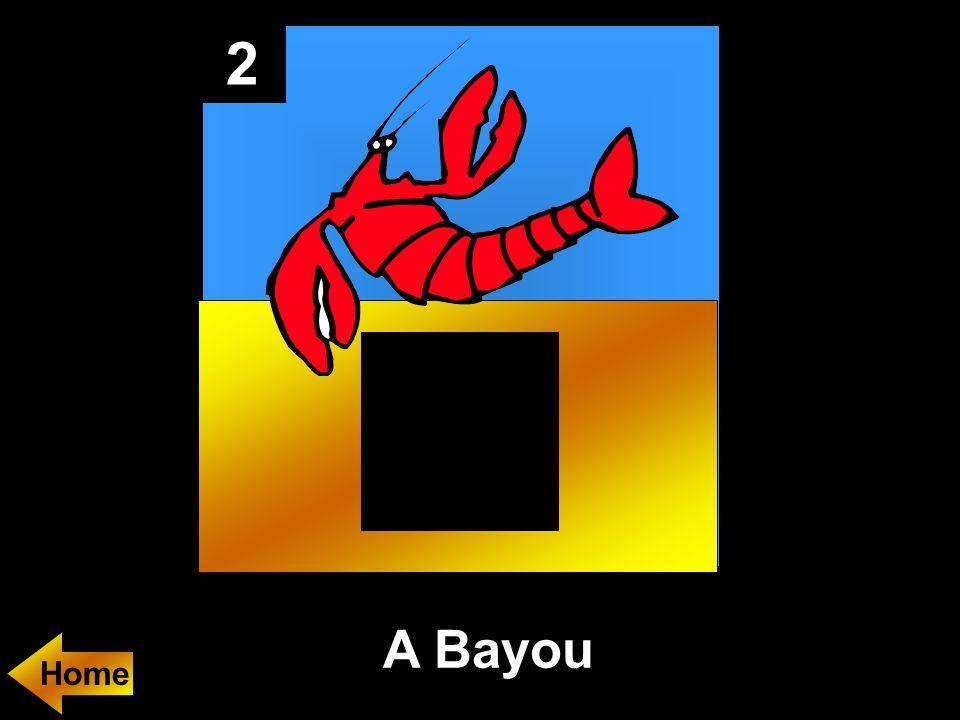 2 A Bayou