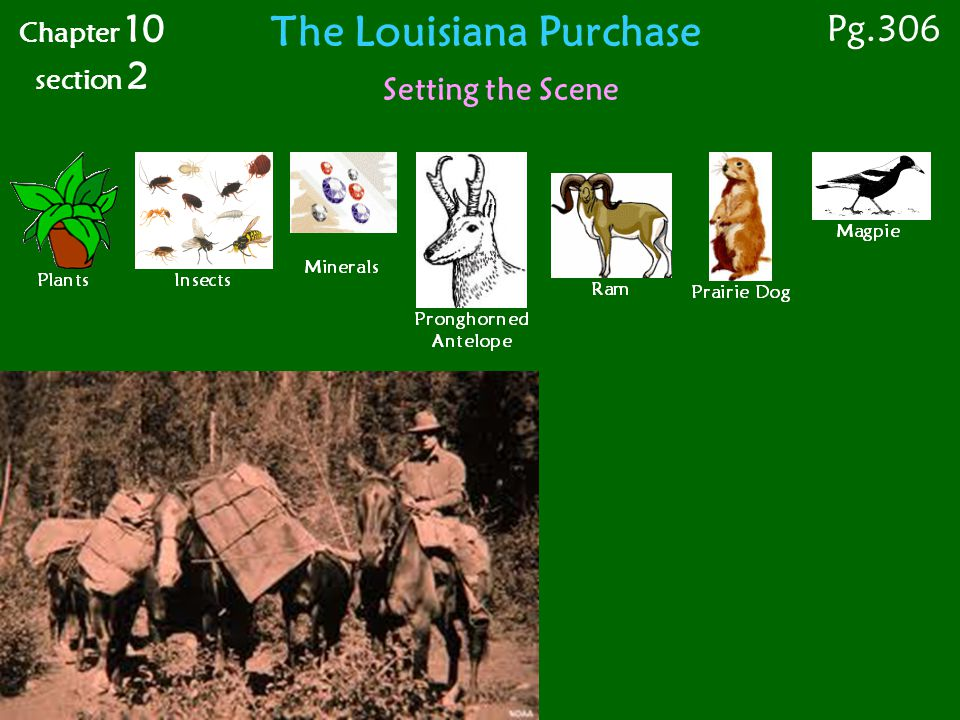 Chapter 10 section 2 The Louisiana Purchase Setting the Scene Pg.306