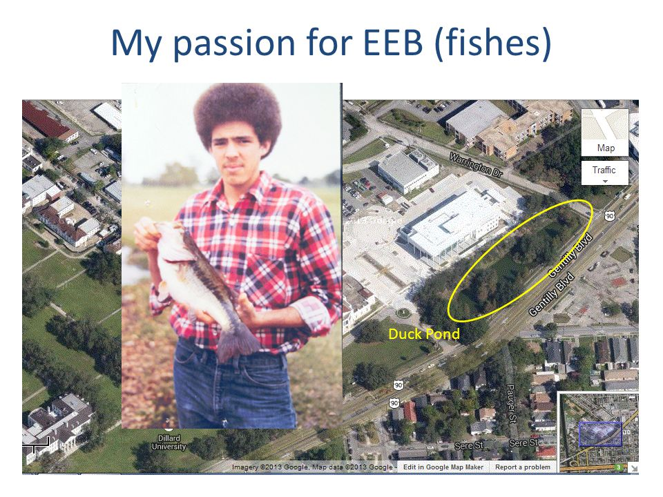 My passion for EEB (fishes) Enjoyed fishing as a boy growing up in Gentilly area of New Orleans. Favorite Movie: Incredible Mr. Limpet. Childhood hero