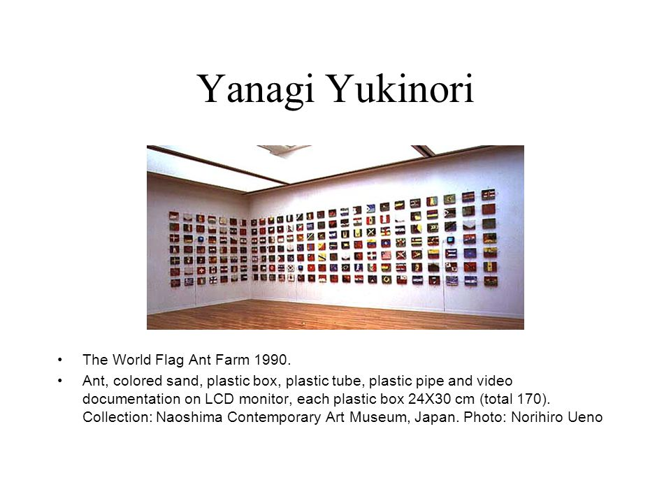 Yanagi Yukinori The World Flag Ant Farm 1990.