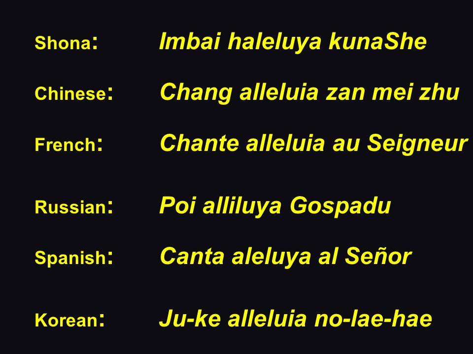 Shona : Imbai haleluya kunaShe Chinese :Chang alleluia zan mei zhu French : Chante alleluia au Seigneur Russian : Poi alliluya Gospadu Spanish : Canta aleluya al Señor Korean : Ju-ke alleluia no-lae-hae