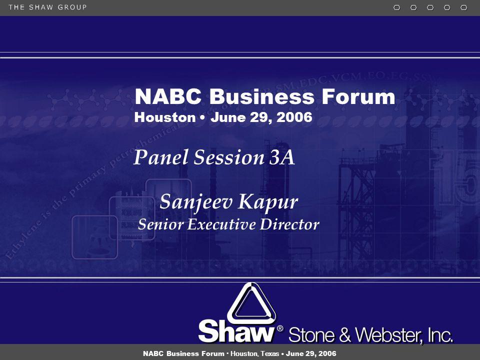 1 NABC Business Forum Houston, Texas June 29, 2006 Panel Session 3A Sanjeev Kapur Senior Executive Director Sanjeev Kapur Senior Executive Director NABC Business Forum Houston June 29, 2006