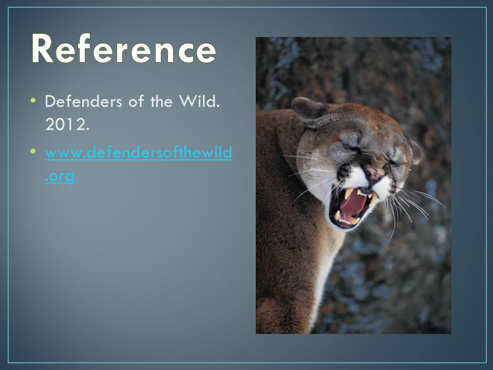 Defenders of the Wild. 2012. www.defendersofthewild.org www.defendersofthewild.org