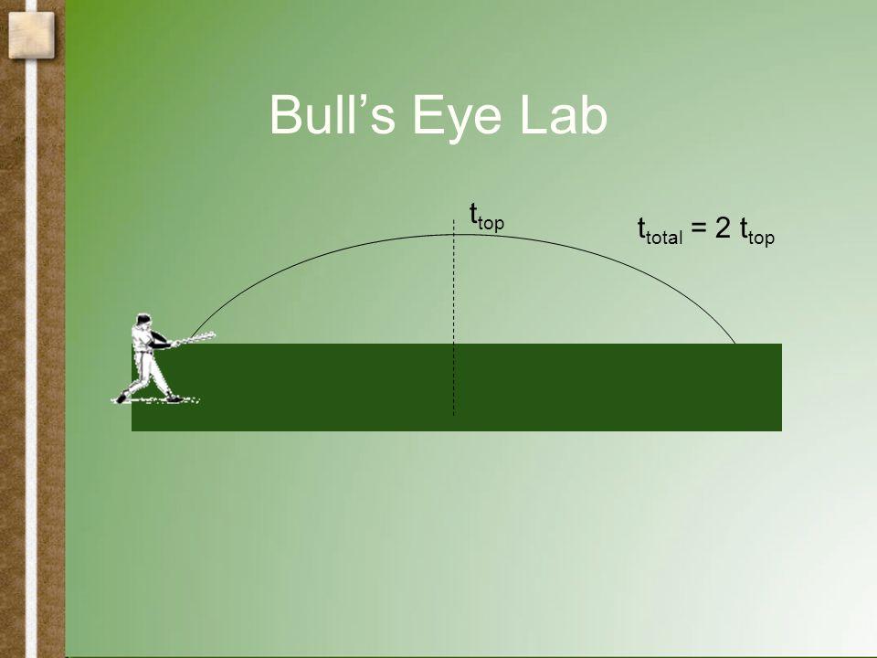 Bull's Eye Lab t top