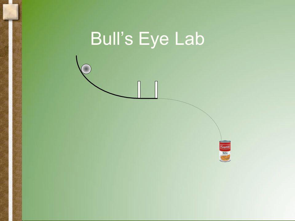 Bull's Eye Lab