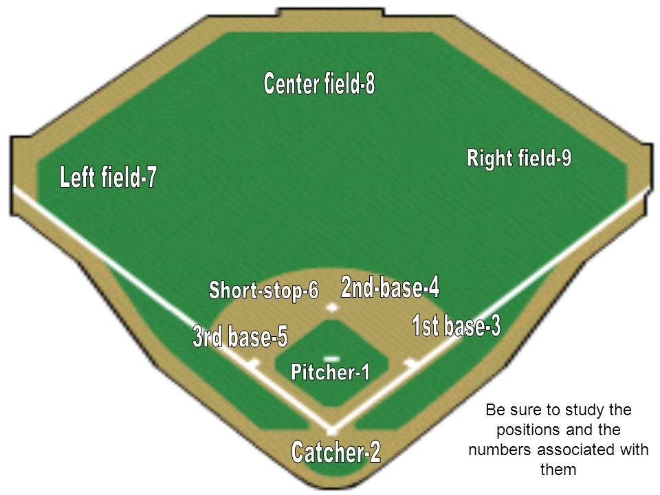 Baseball Review cont… 11.What are the positions colored in red?