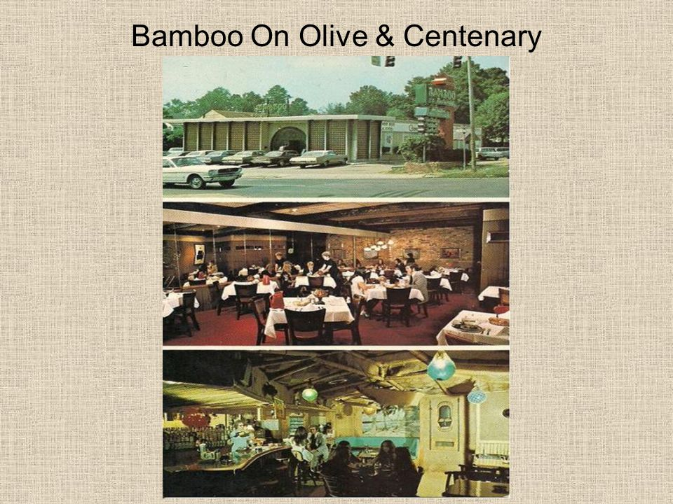 Bamboo On Olive & Centenary