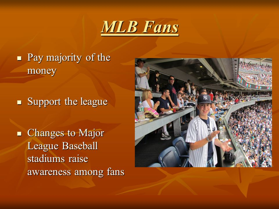 MLB Fans Pay majority of the money Pay majority of the money Support the league Support the league Changes to Major League Baseball stadiums raise awa