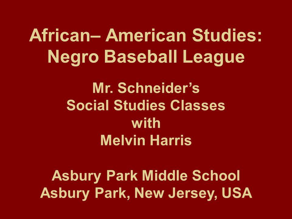 African– American Studies: Negro Baseball League Mr.