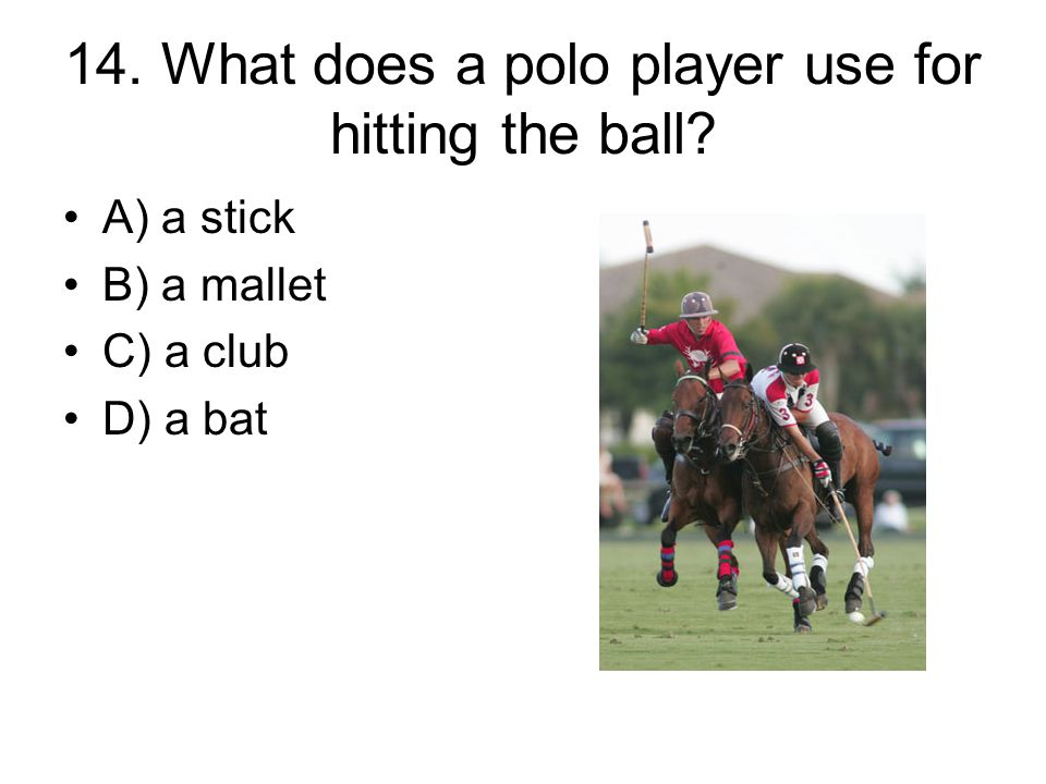 14. What does a polo player use for hitting the ball? A) a stick B) a mallet C) a club D) a bat