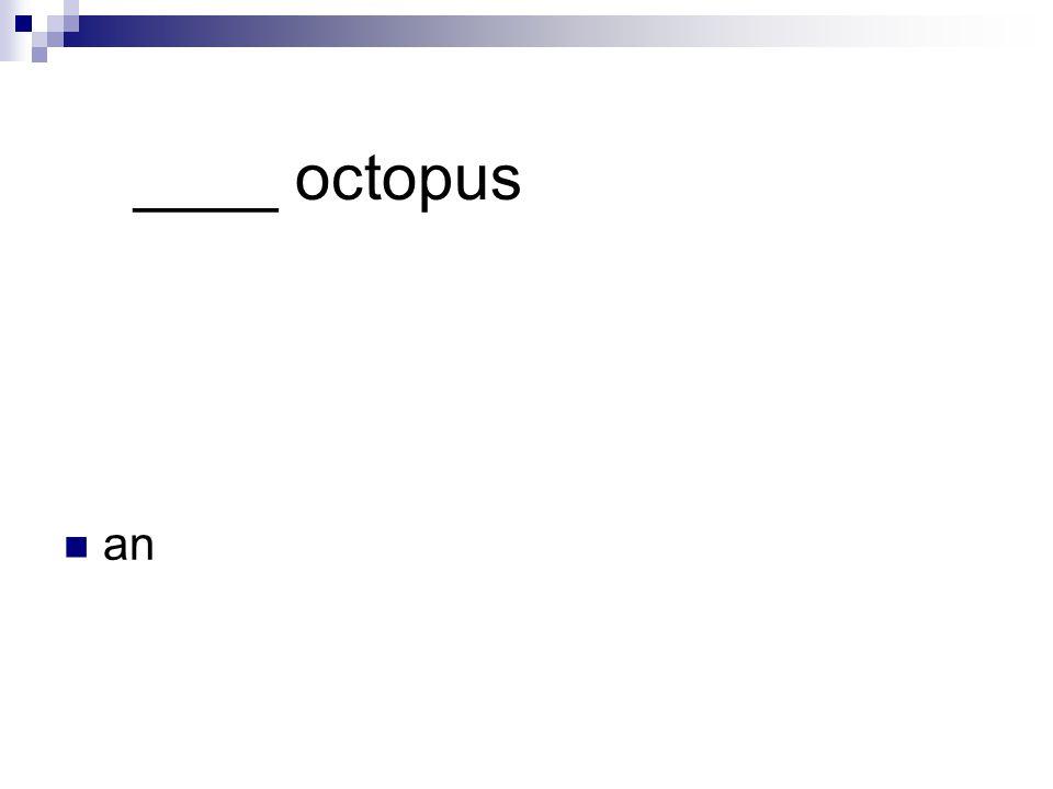 ____ octopus an
