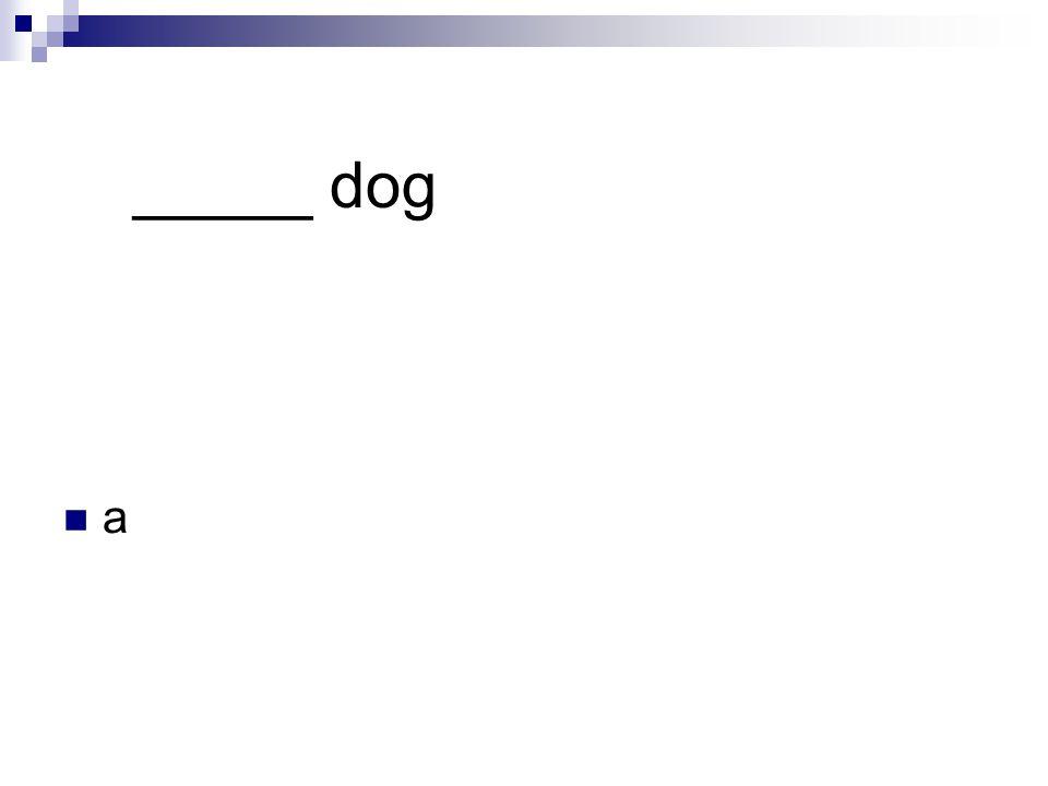 _____ dog a