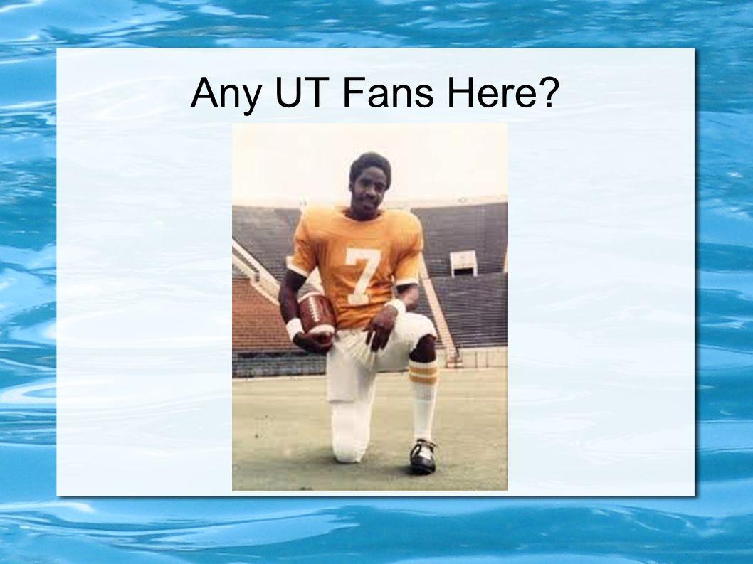 Any UT Fans Here?