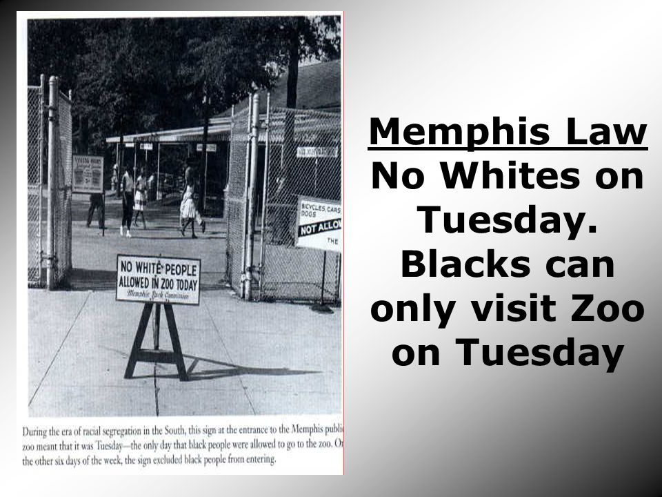 Memphis Law No Whites on Tuesday. Blacks can only visit Zoo on Tuesday