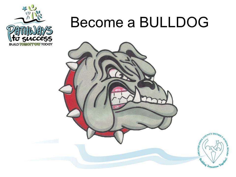 Become a BULLDOG