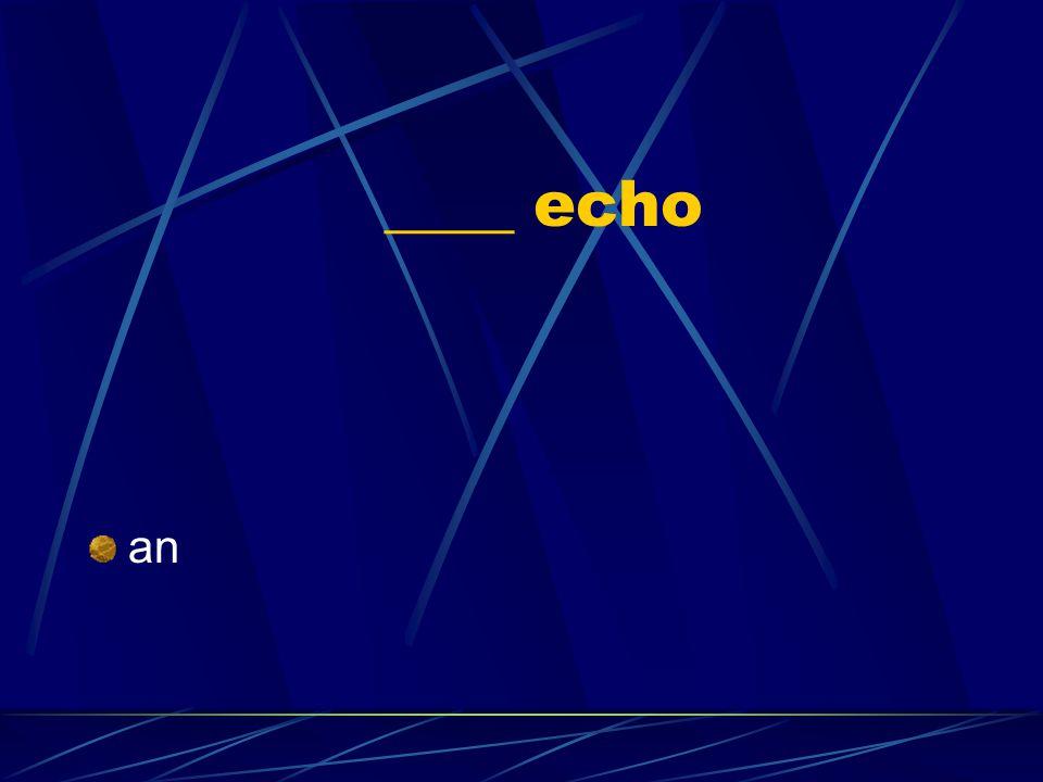 ____ echo an