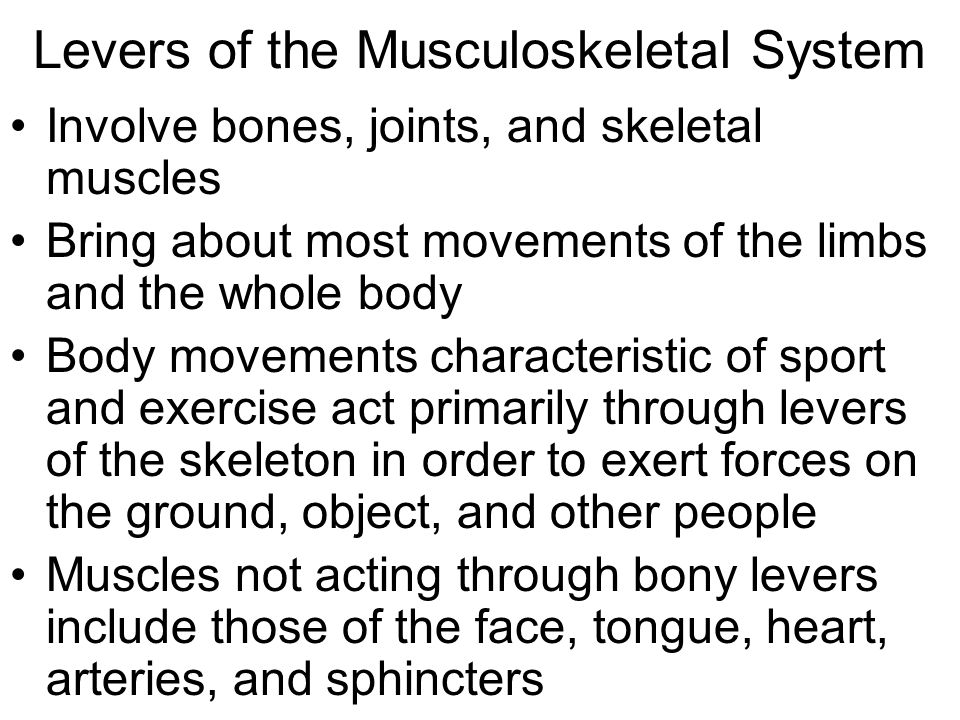 Levers of the Musculoskeletal System Involve bones, joints, and skeletal muscles Bring about most movements of the limbs and the whole body Body movements characteristic of sport and exercise act primarily through levers of the skeleton in order to exert forces on the ground, object, and other people Muscles not acting through bony levers include those of the face, tongue, heart, arteries, and sphincters