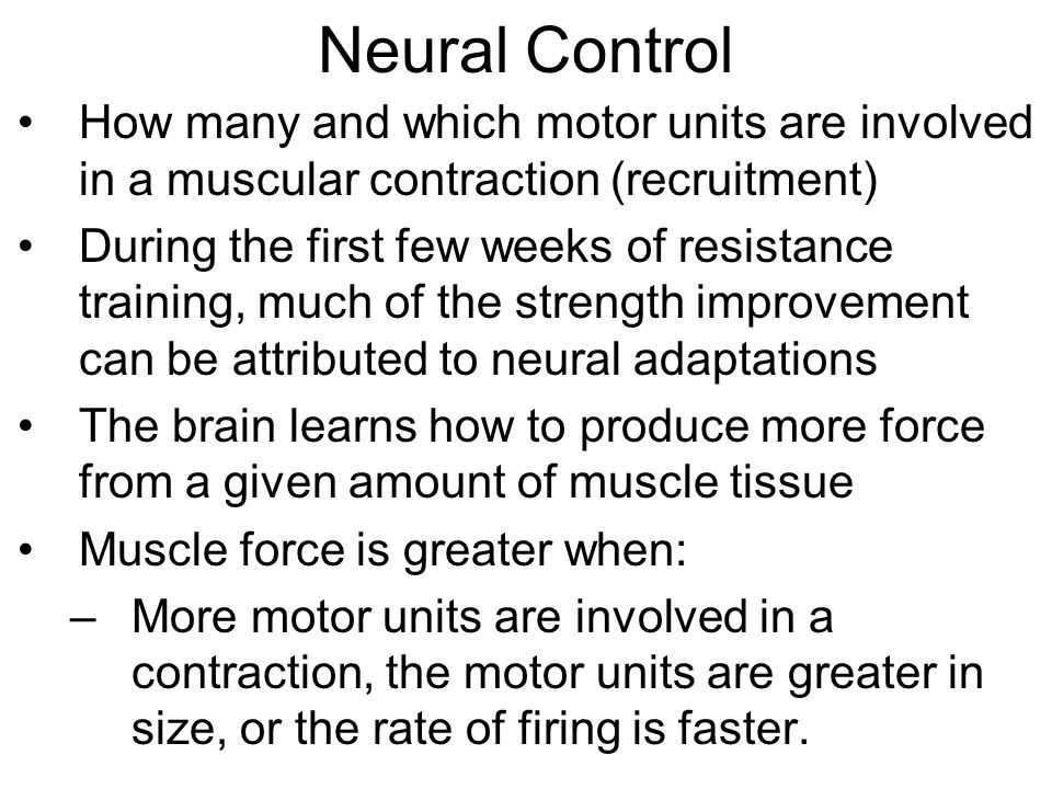 Neural Control How many and which motor units are involved in a muscular contraction (recruitment) During the first few weeks of resistance training, much of the strength improvement can be attributed to neural adaptations The brain learns how to produce more force from a given amount of muscle tissue Muscle force is greater when: –More motor units are involved in a contraction, the motor units are greater in size, or the rate of firing is faster.