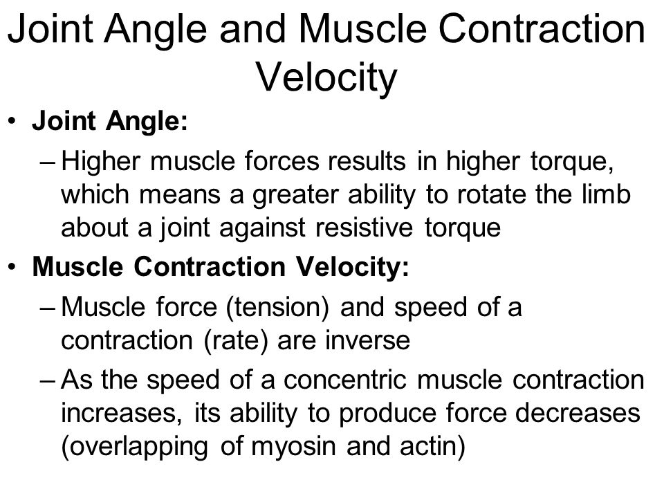 Joint Angle and Muscle Contraction Velocity Joint Angle: –Higher muscle forces results in higher torque, which means a greater ability to rotate the limb about a joint against resistive torque Muscle Contraction Velocity: –Muscle force (tension) and speed of a contraction (rate) are inverse –As the speed of a concentric muscle contraction increases, its ability to produce force decreases (overlapping of myosin and actin)