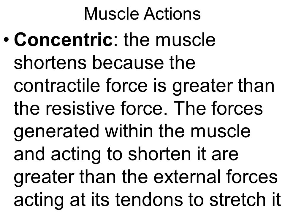 Muscle Actions Concentric: the muscle shortens because the contractile force is greater than the resistive force.