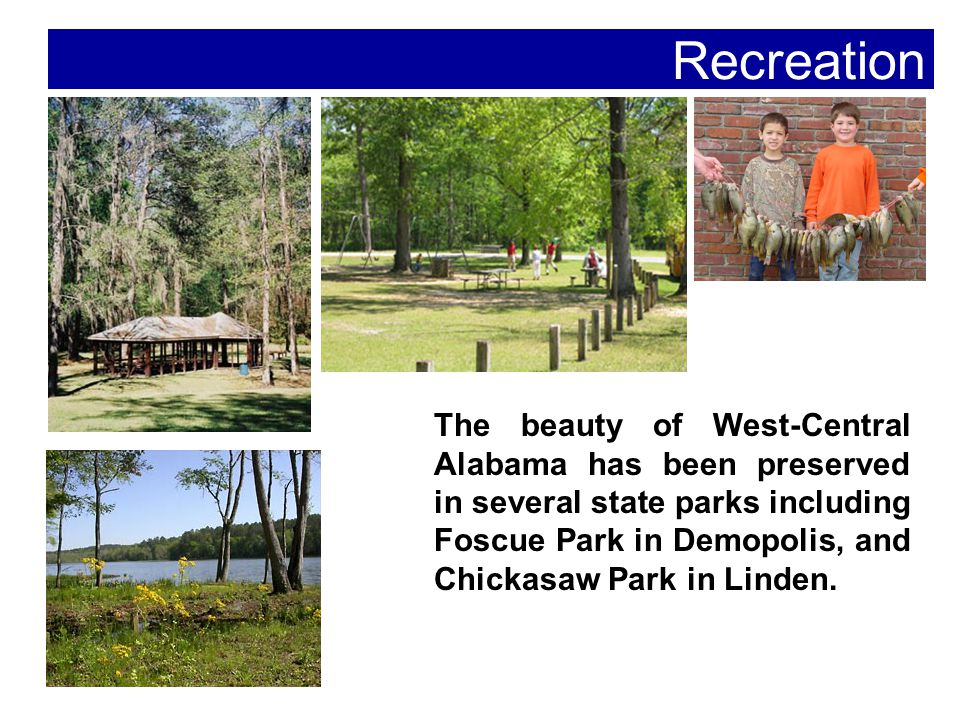 The beauty of West-Central Alabama has been preserved in several state parks including Foscue Park in Demopolis, and Chickasaw Park in Linden.