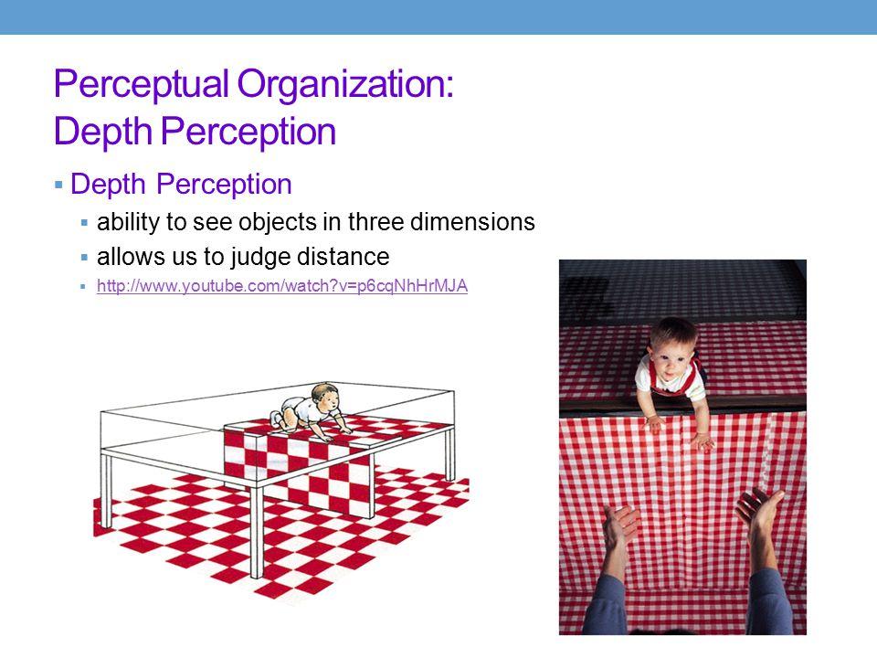 Perceptual Organization: Depth Perception Illusory Depth