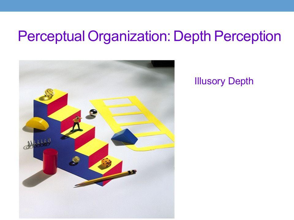 Perceptual Organization: Depth Perception Illusory Depth Explanation