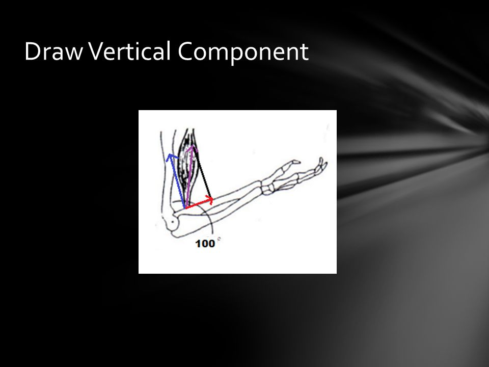 Draw Vertical Component