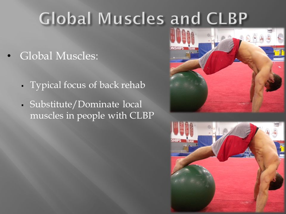 Global Muscles:  Typical focus of back rehab  Substitute/Dominate local muscles in people with CLBP