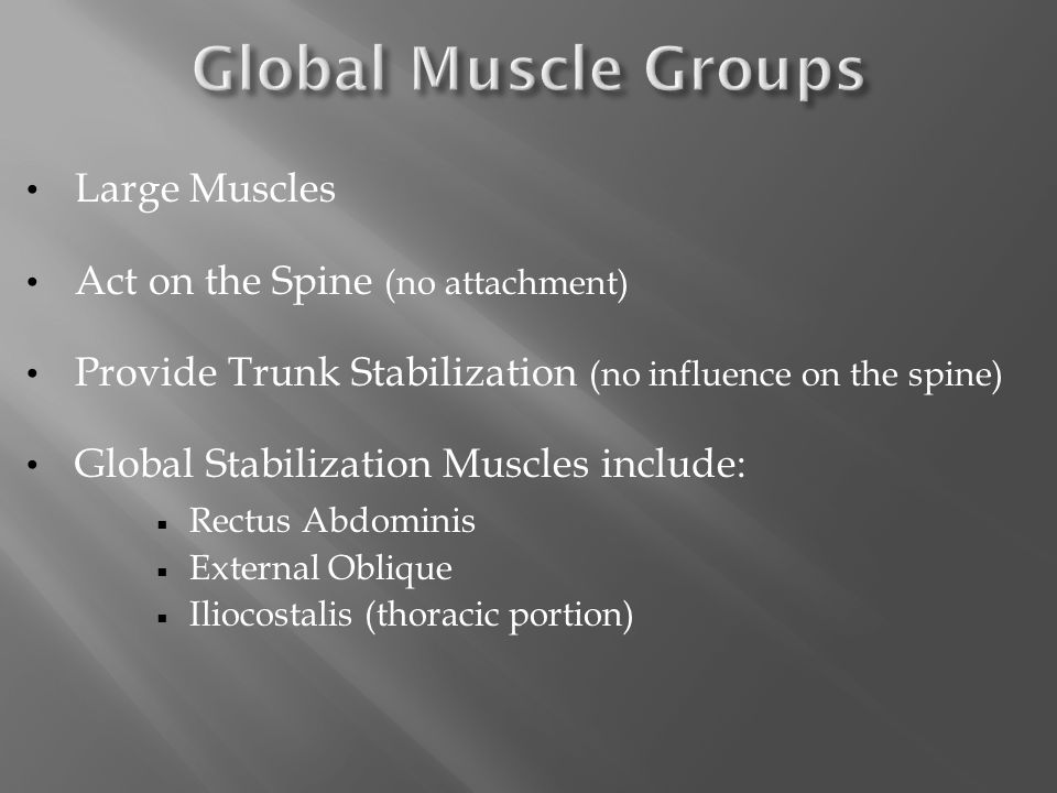 Large Muscles Act on the Spine (no attachment) Provide Trunk Stabilization (no influence on the spine) Global Stabilization Muscles include:  Rectus Abdominis  External Oblique  Iliocostalis (thoracic portion)