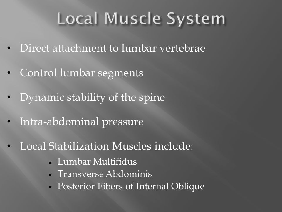 Global Muscles:  Typical focus of back rehab  Substitute/Dominate local muscles in people with CLBP
