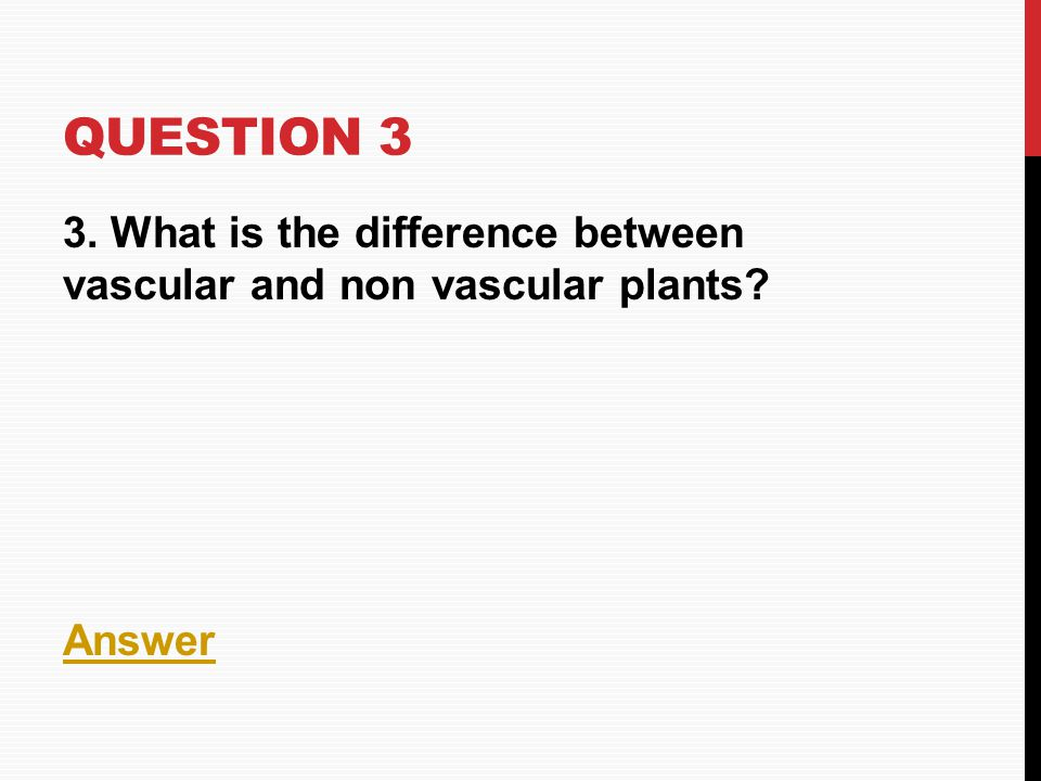 QUESTION 3 3. What is the difference between vascular and non vascular plants? Answer