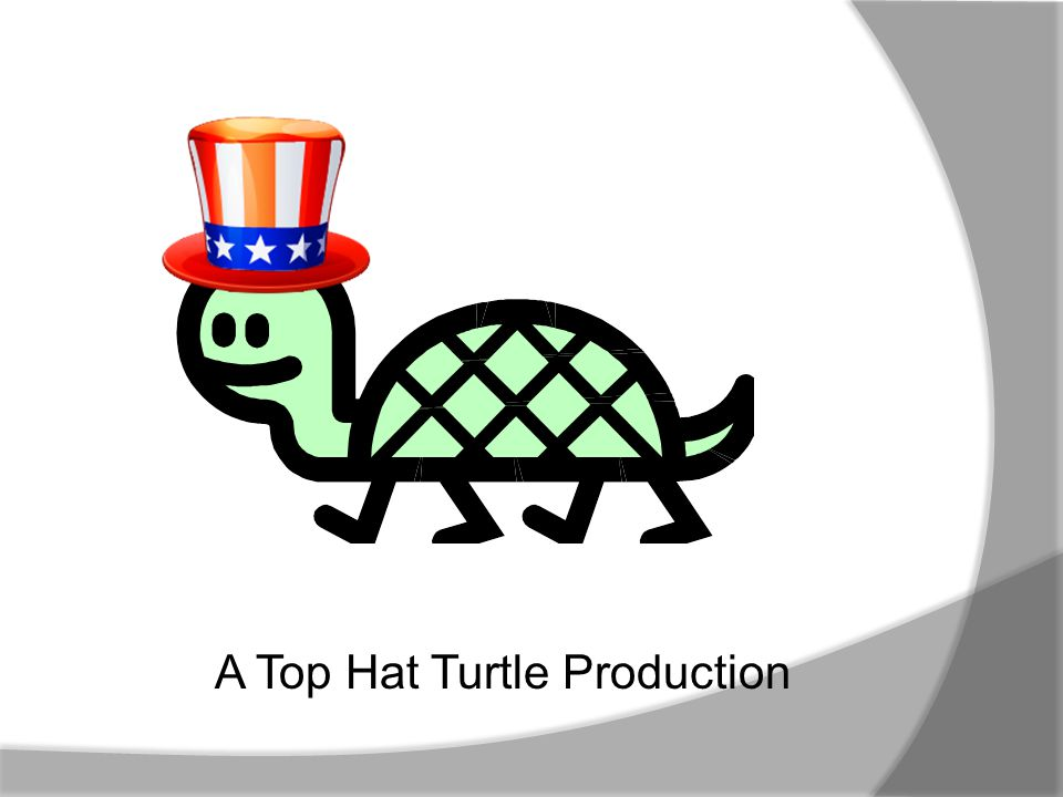 A Top Hat Turtle Production