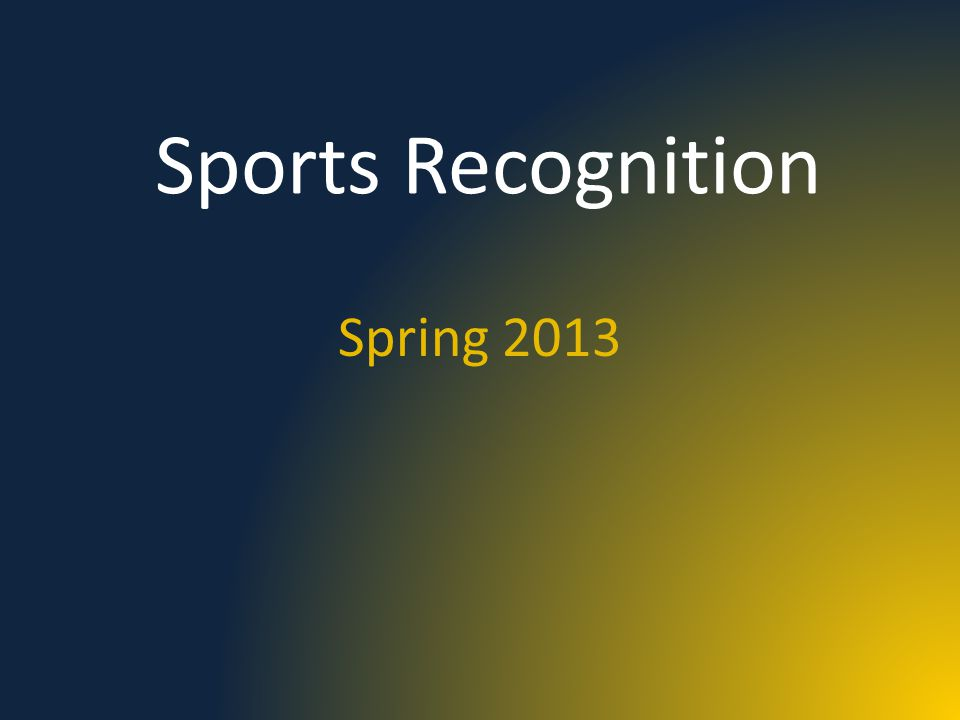 Sports Recognition Spring 2013