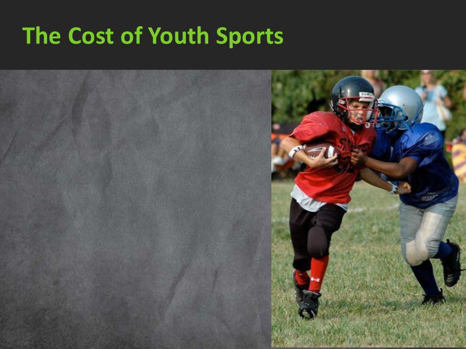 2010 Baseball Fees $1,800 Soccer Fees $ 250 Baseball Trip to Tennessee* $ 315 Volleyball (Wilson AVP) $ 15 Soccer ball (Adidas) $ 15 House Rental (Coo