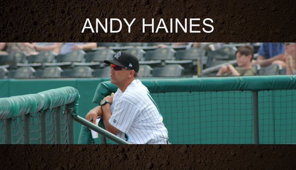 ANDY HAINES