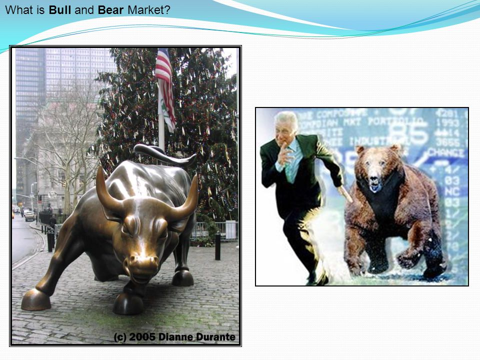 What is Bull and Bear Market