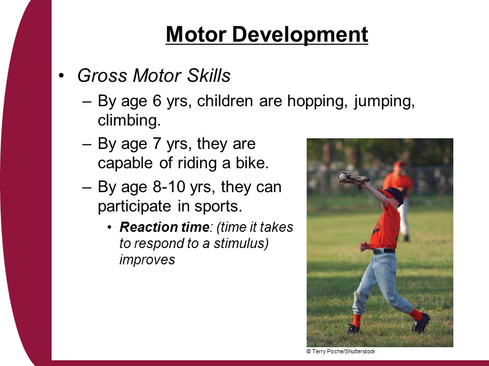 Motor Development Gross Motor Skills –By age 6 yrs, children are hopping, jumping, climbing.