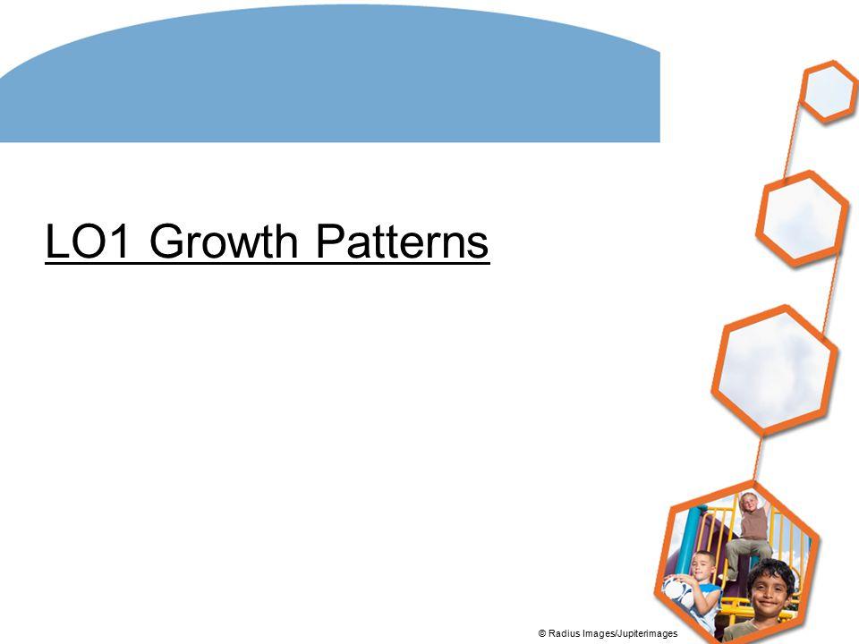 LO1 Growth Patterns © Radius Images/Jupiterimages