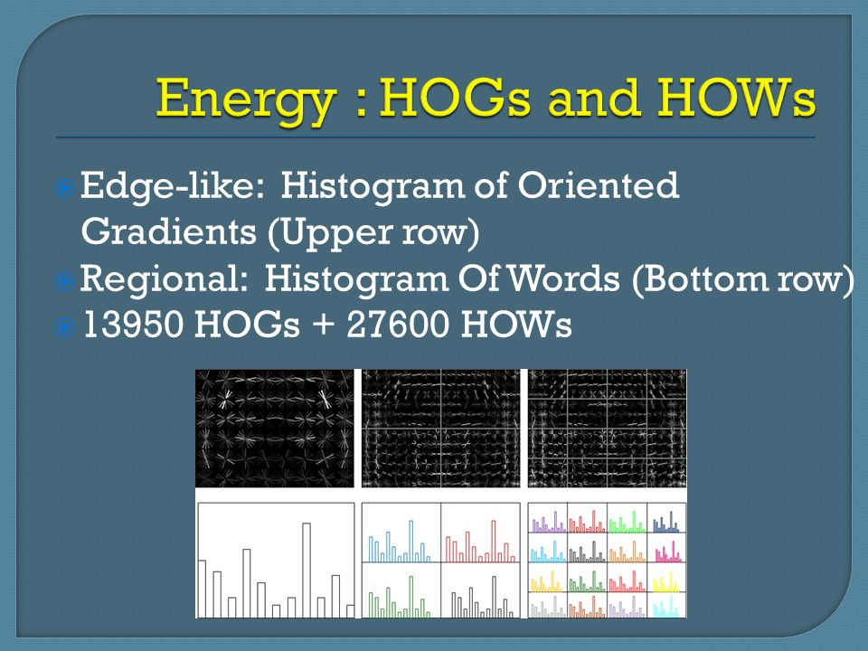  Edge-like: Histogram of Oriented Gradients (Upper row)  Regional: Histogram Of Words (Bottom row)  13950 HOGs + 27600 HOWs