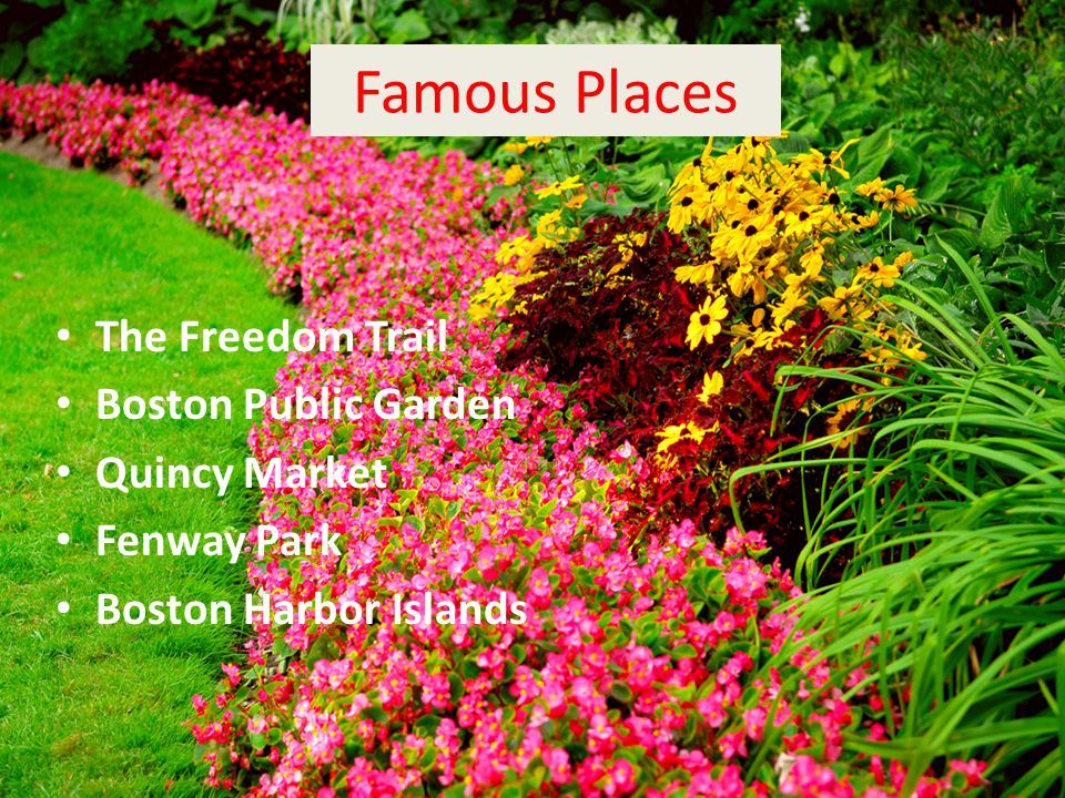 Famous Places The Freedom Trail Boston Public Garden Quincy Market Fenway Park Boston Harbor Islands