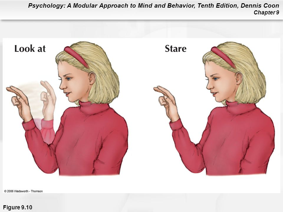 Psychology: A Modular Approach to Mind and Behavior, Tenth Edition, Dennis Coon Chapter 9 Figure 9.10