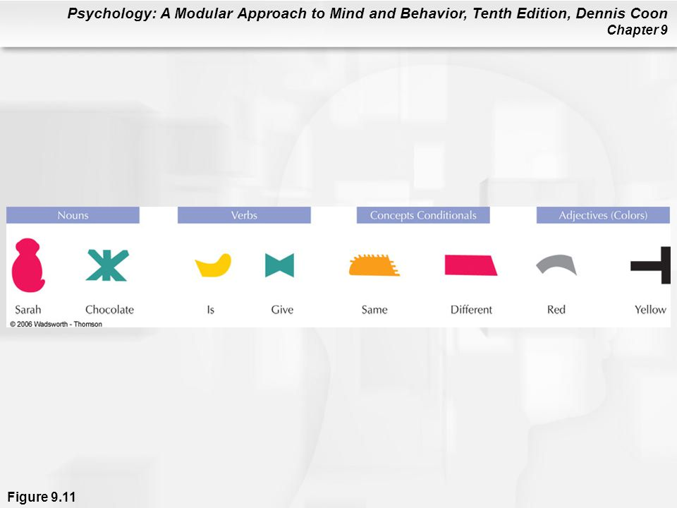 Psychology: A Modular Approach to Mind and Behavior, Tenth Edition, Dennis Coon Chapter 9 Figure 9.11