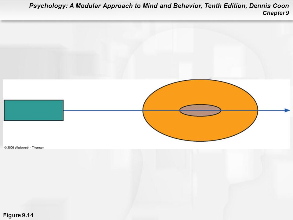 Psychology: A Modular Approach to Mind and Behavior, Tenth Edition, Dennis Coon Chapter 9 Figure 9.14