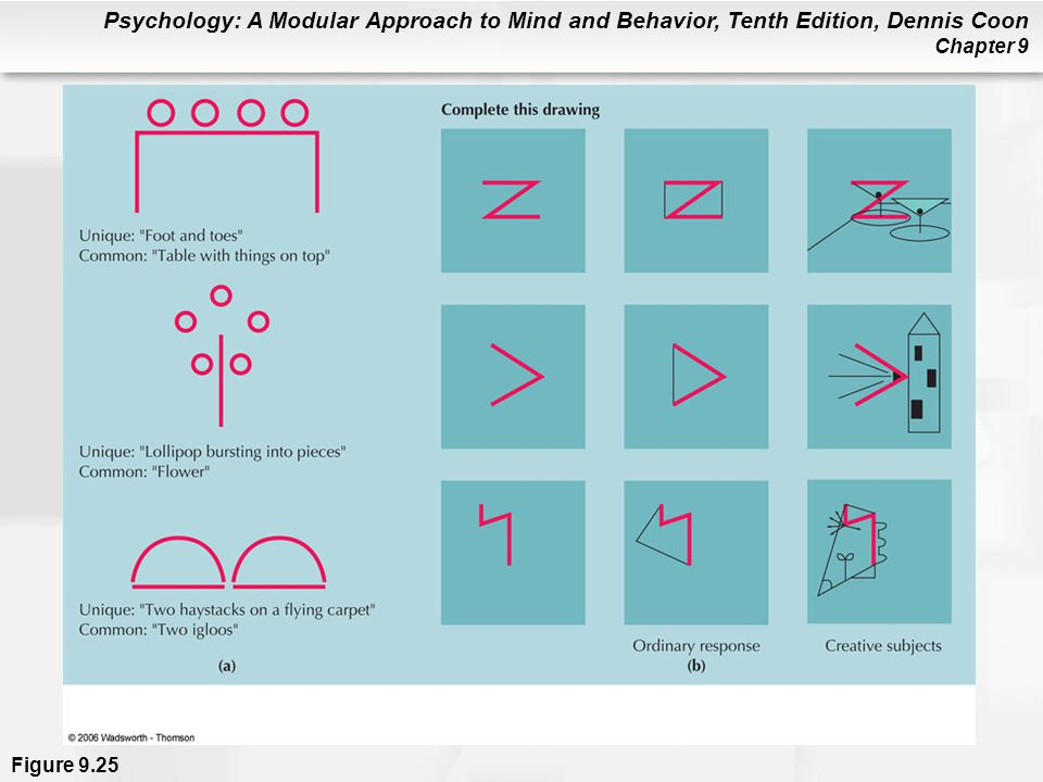 Psychology: A Modular Approach to Mind and Behavior, Tenth Edition, Dennis Coon Chapter 9 Figure 9.25