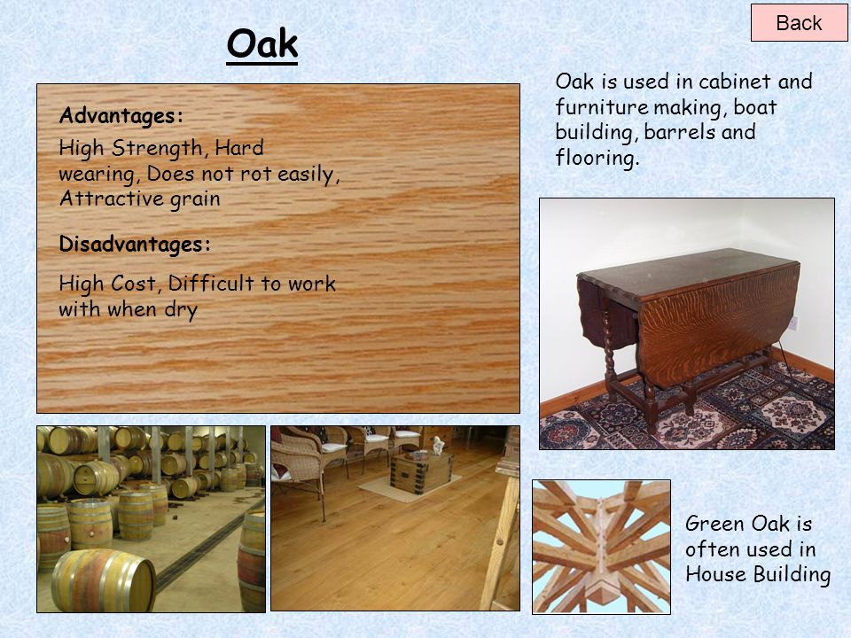 Beech Beech is used in cabinet and furniture making, work benches, desks, chairs, turnery, tool handles, mallets, decorative veneers and domestic floo