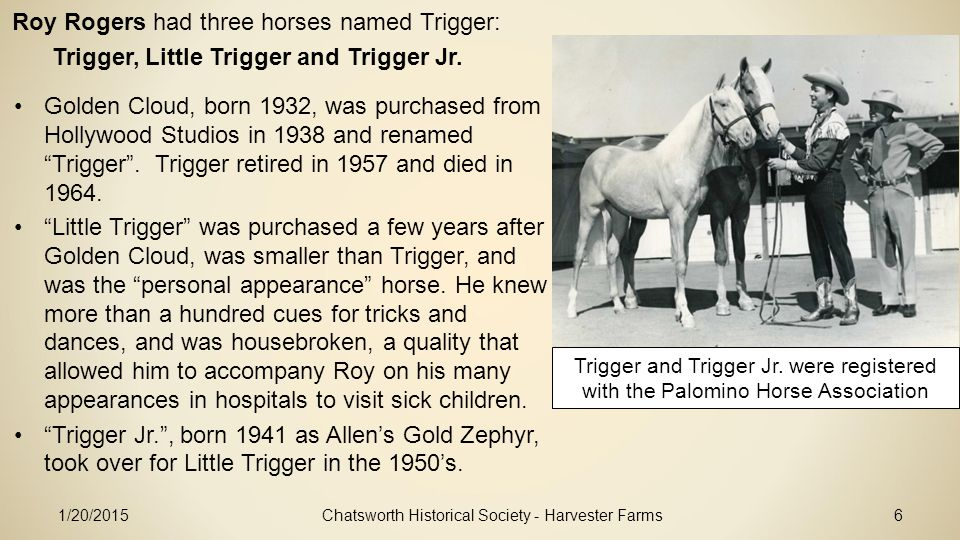 1/20/2015Chatsworth Historical Society - Harvester Farms6 Roy Rogers had three horses named Trigger: Trigger, Little Trigger and Trigger Jr.