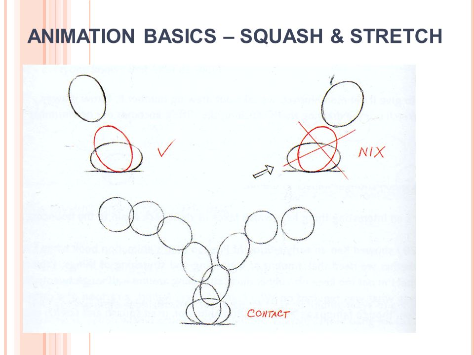 ANIMATION BASICS – SQUASH & STRETCH