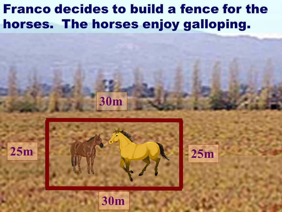 30m 25m 30m Franco decides to build a fence for the horses. The horses enjoy galloping.
