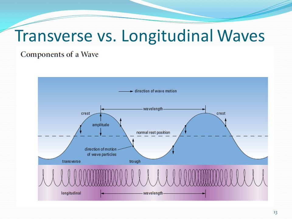 13 Transverse vs. Longitudinal Waves